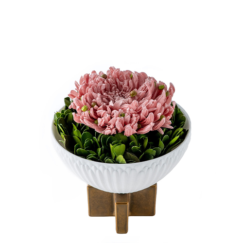 Aritayaki Chrysanthemum