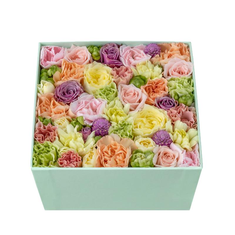Coral Blooms (Multi)