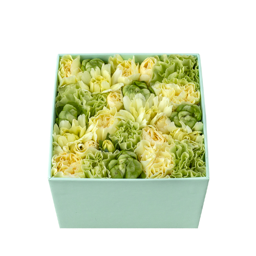 Coral Blooms (Lemon) image