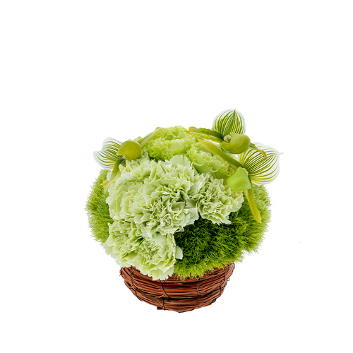 Summer Basket  (Sea Moss) image