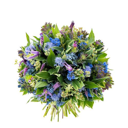 Gracefully Blue image